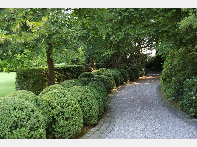 S bastien taelman paysagiste et entrepreneur de jardins for Entrepreneur de jardin