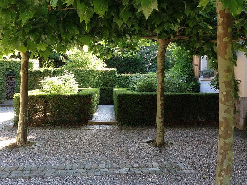 S bastien taelman paysagiste et entrepreneur de jardins for Entretien jardin 41