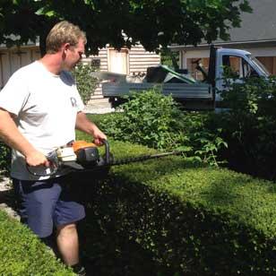 Horticulteur paysagiste